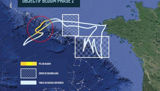 Infographie phase2 V2